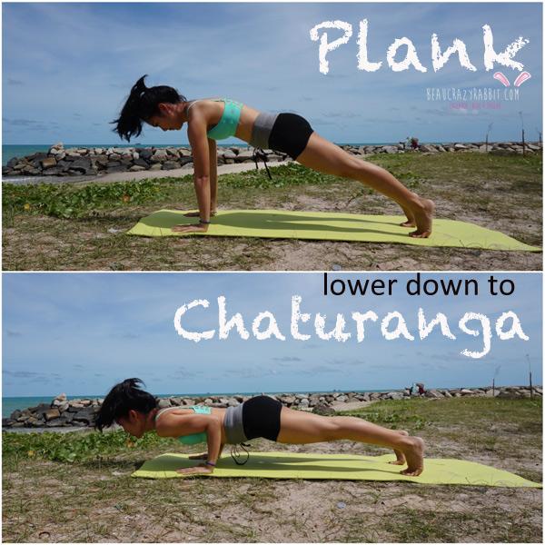 plank4